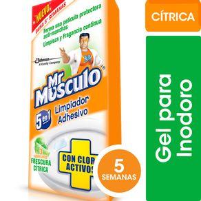 Limpiador-Adhesivo-Cloroactivo-Citric-Mr-Musculo-30-Gr-1-22554