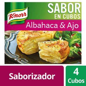 Sabor-En-Cubos-Albahaca-Y-Ajo-Knorr-4x240gr-1-15383