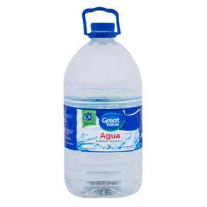 Bidon-De-Agua-Great-Value-65-Lts-1-36085