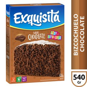 Bizcochuelo-Exquisita-Chocolate-Especial-540-Gr-1-13370
